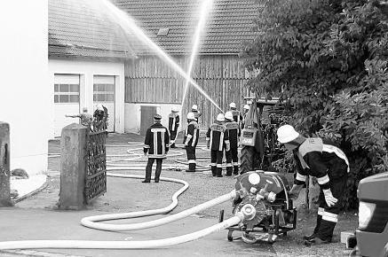 Im Rahmen der Feuerwehr-Aktionswoche bekämpften die Wehren aus Ilsenbach, Püchersreuth, Wurz, Lanz und Neustadt einen Übungsbrand in der Dorfmitte von Ilsenbach. Kreisbrandrat Richard Meier und Kreisbrandmeister Alfons Huber beobachteten den gemeinsamen Löscheinsatz.