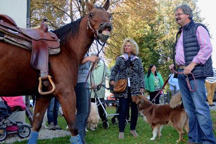 Quelle, Text und Bilder: Der Neue Tag, Samstag 04. Oktober 2014 bzw. www.Oberpfalznetz.de Bildergalerien, Segnung der Tiere